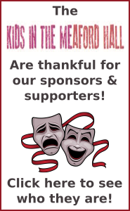 KIMH 2017 sponsor thanks