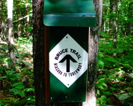 bruce trail sign 270