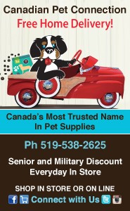 cdnpetconnectionad