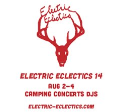 Electric Eclectics Ad